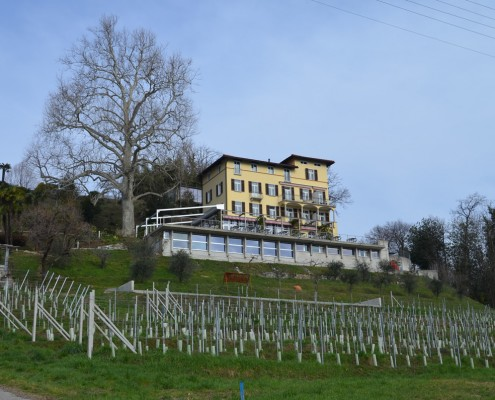 Hotel Paladina: Ferien im Tessin