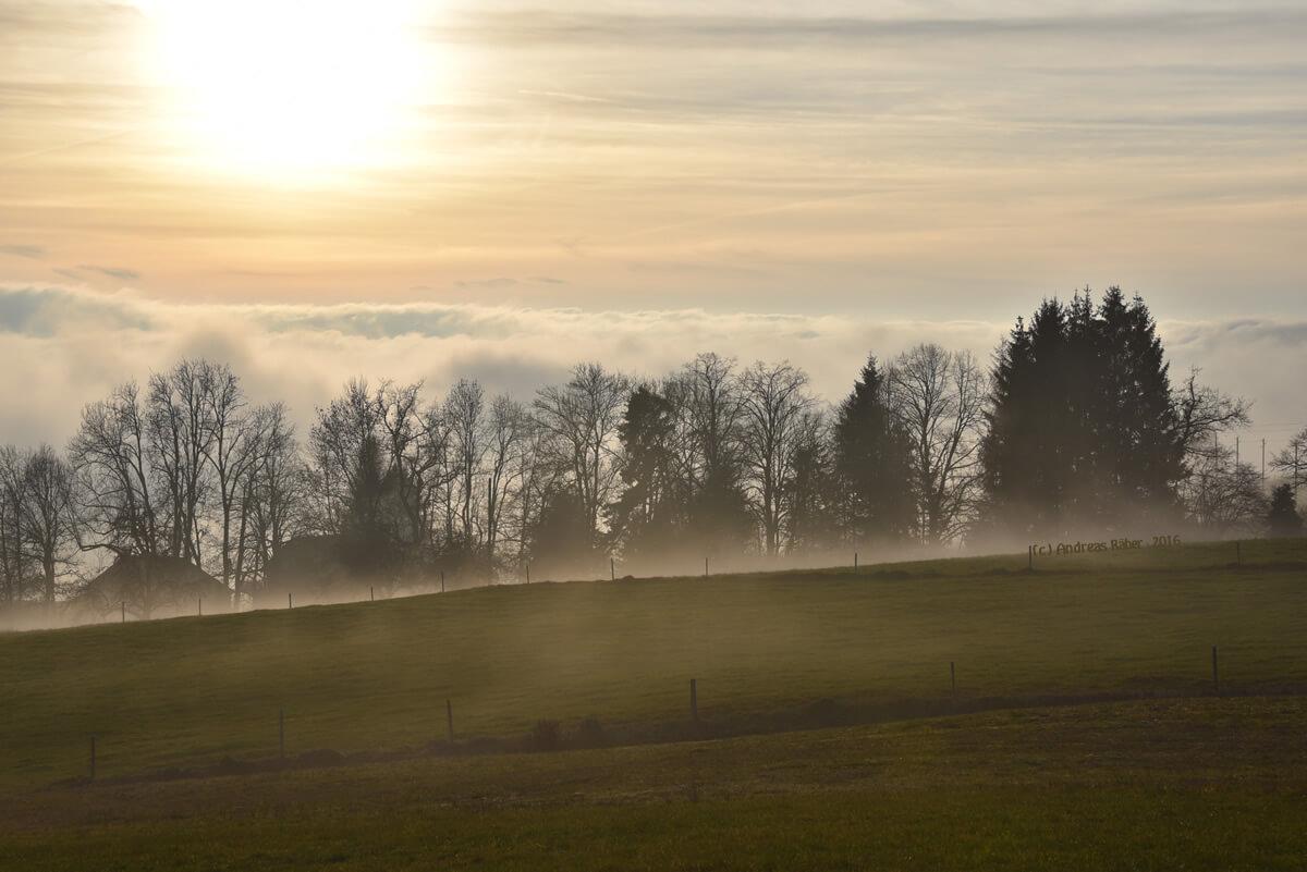 Ostern und Auferstehung: Ein besonderer Tag für die ganze Menschheit!