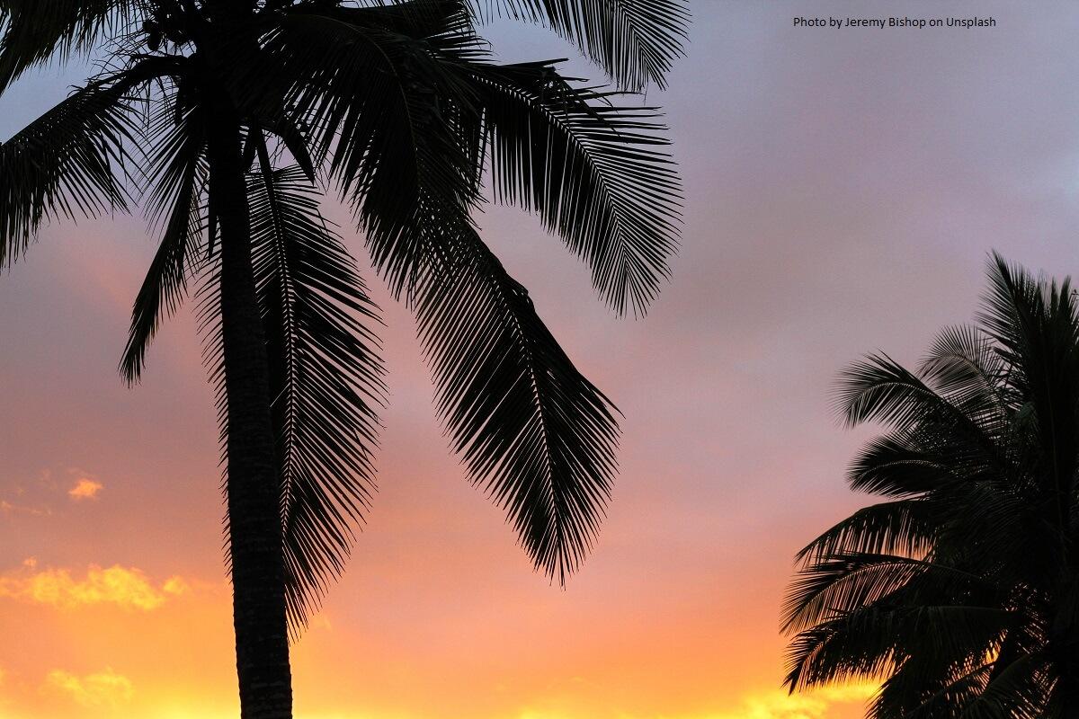 Palmsonntag, der Sonntag vor Ostern